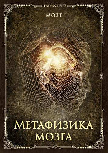 Программа «Метафизика мозга»