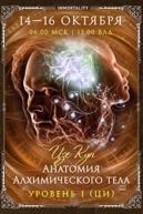 Анатомия Алхимического тела. Уровень ци
